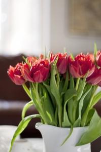 Kompozycja z tulipanów w wazonie